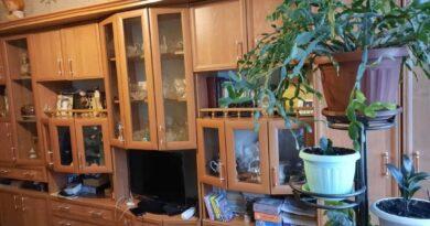 Мебельная стенка – экономия и уют